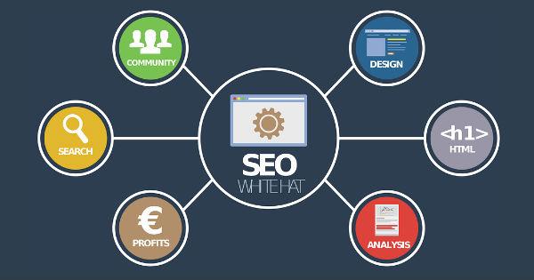 بهینه سازی سایت برای موتورهای جستجو – پندانه – مقاله
