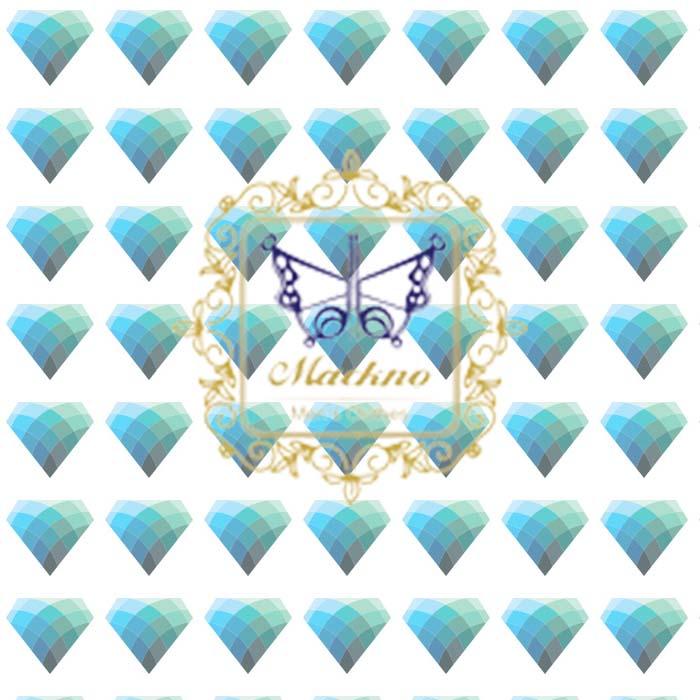 پوشاک مکنو - چهارمین گردهمایی مدیران الماسی
